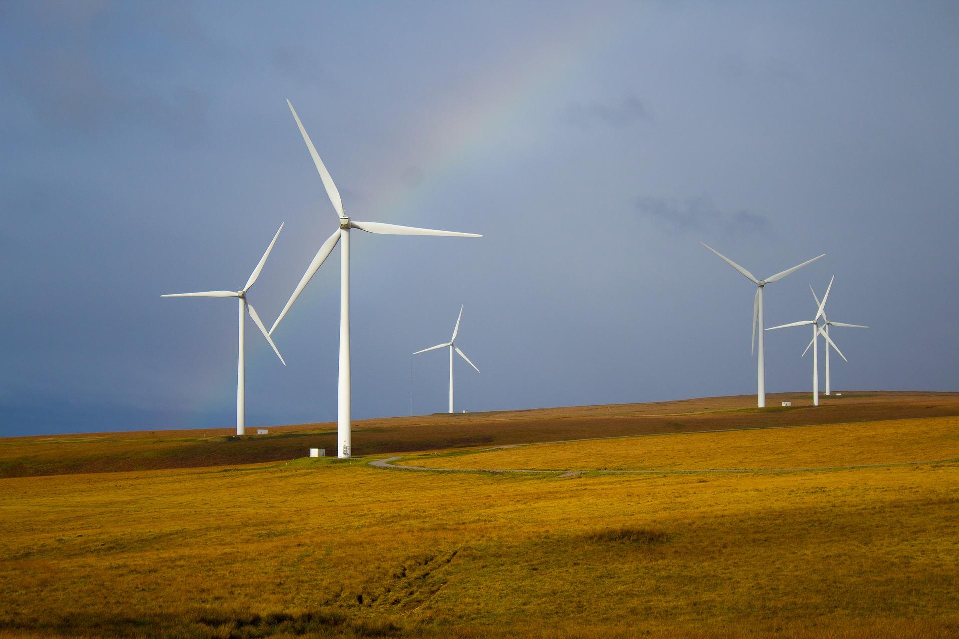 Wielkopolska w trójce województw, w których powstaje najwięcej energii z odnawialnych źródeł