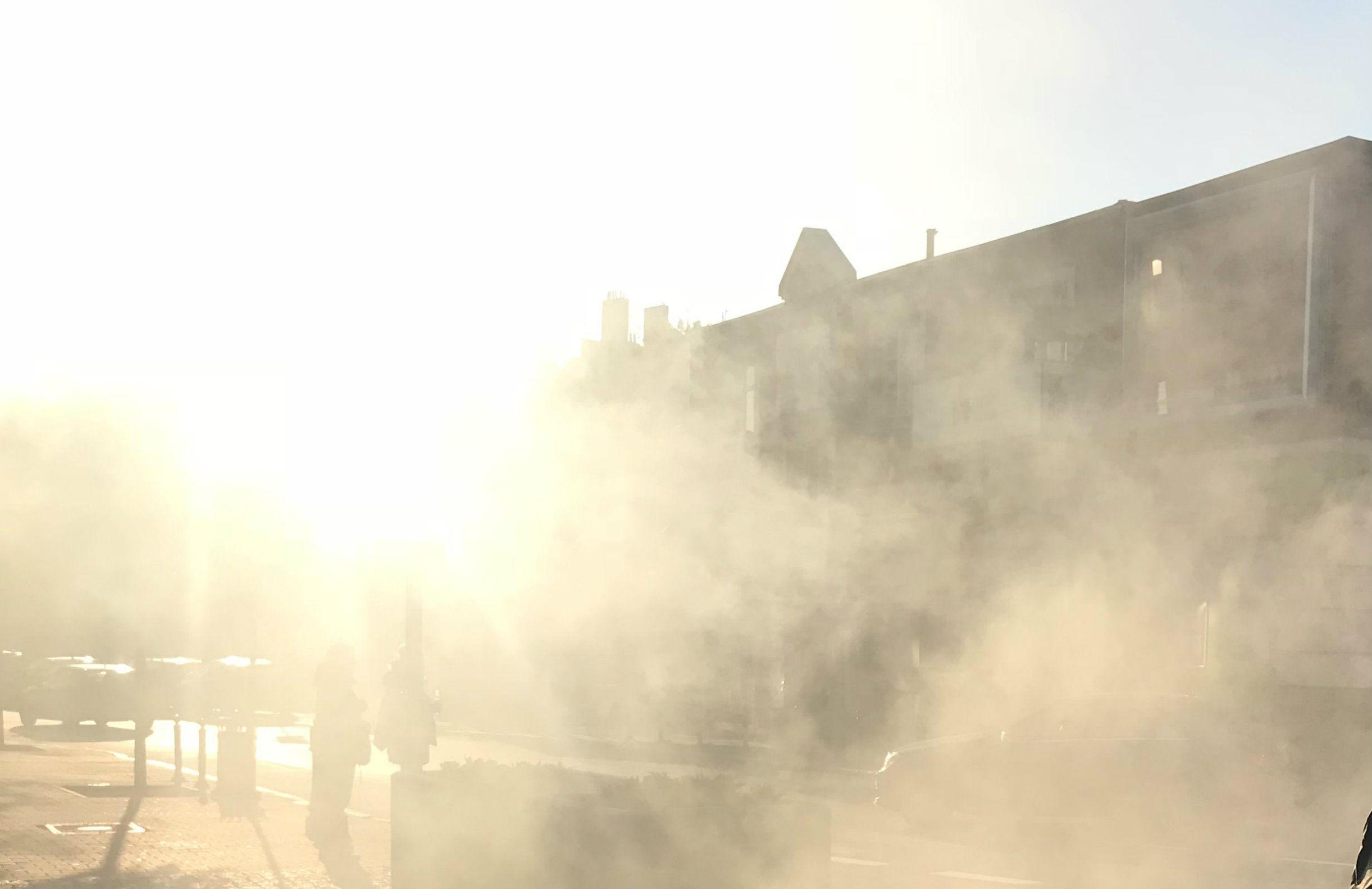 Jak radzić sobie ze smogiem i co zrobić, by go zmniejszyć?