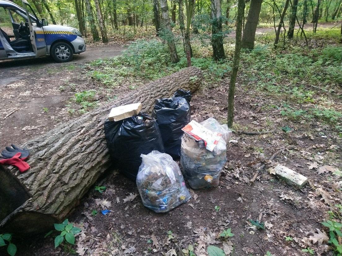 Kilkadziesiąt tysięcy złotych miesięcznie na sprzątanie śmieci wyrzucanych w poznańskich lasach