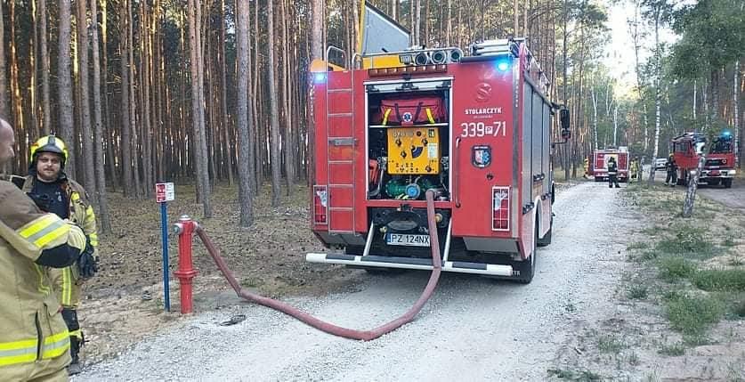 Poranny pożar ściółki leśnej w powiecie poznańskim
