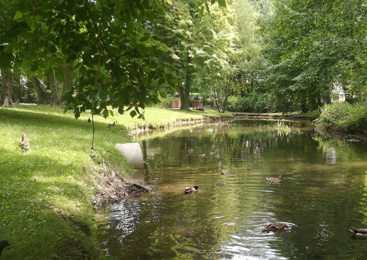 Woda trafiająca do Bogdanki jest czystsza