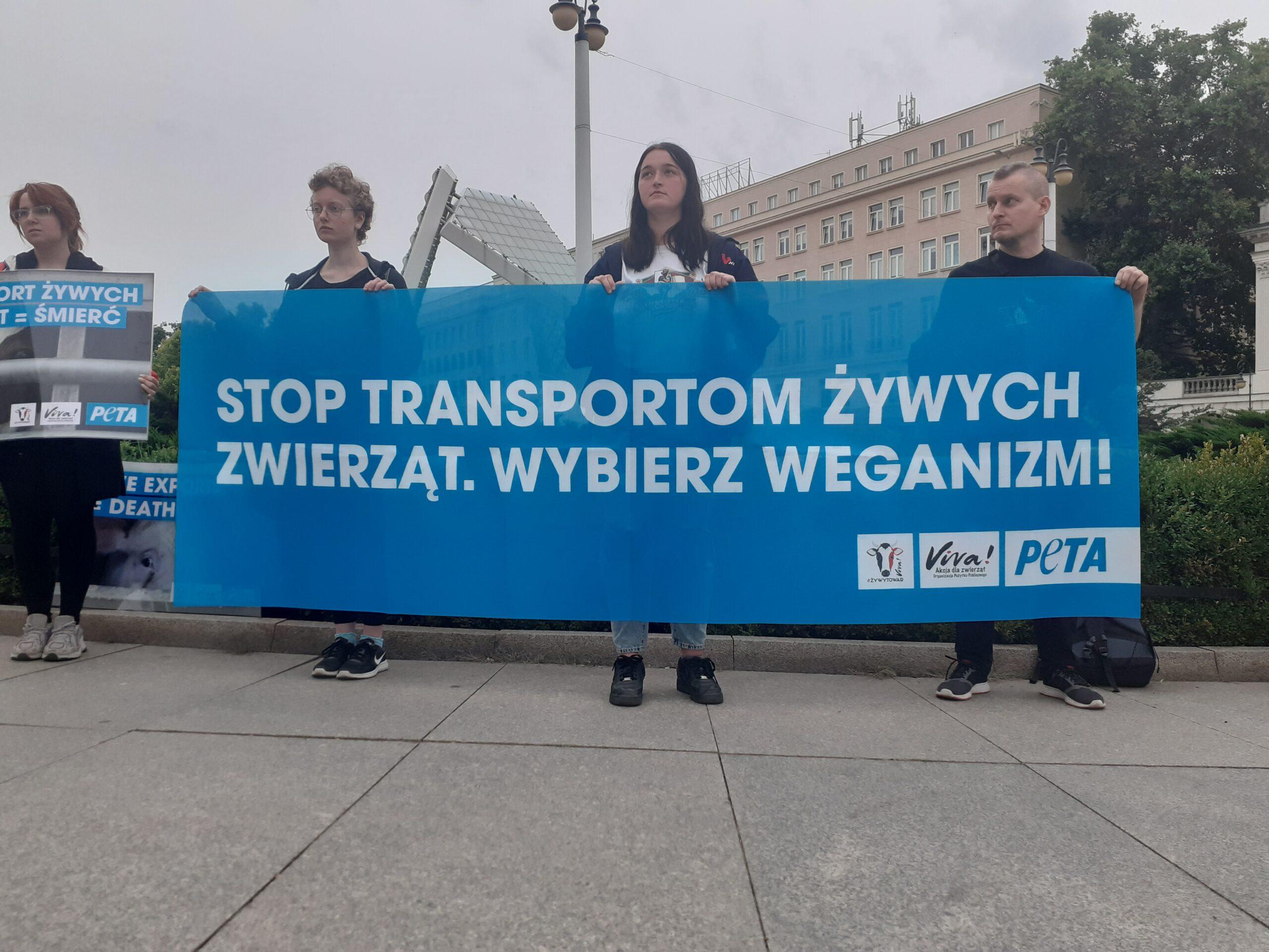 Chcą zakazu długodystansowego transportu żywych zwierząt. Protest na Placu Wolności