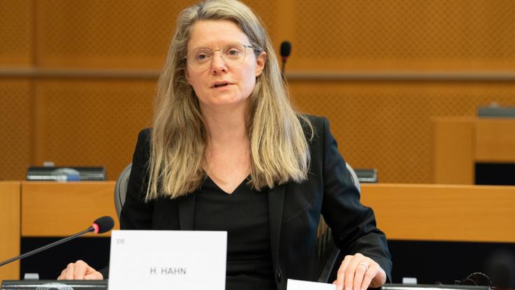 Henrike Hahn: sektor energochłonny też może być zielony