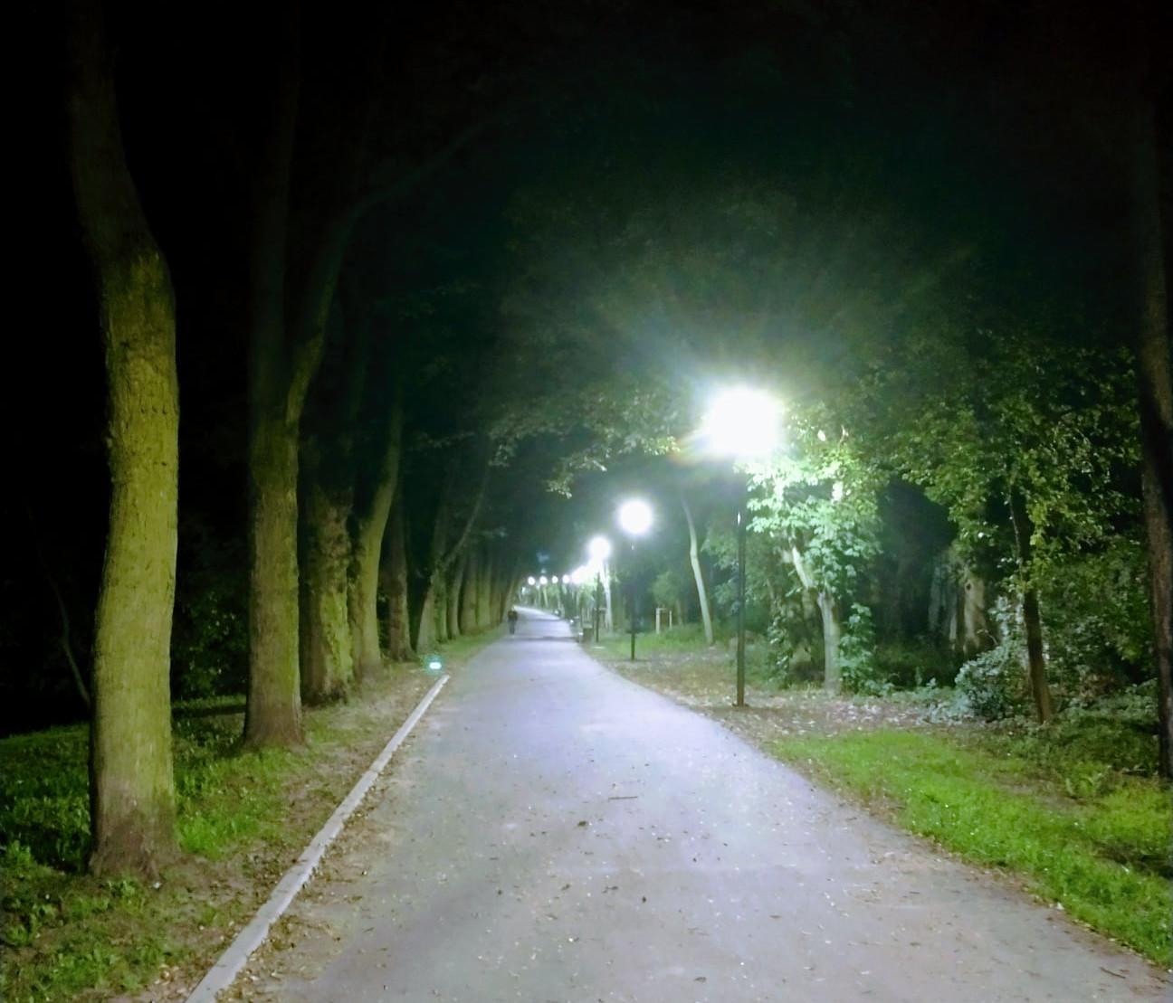Park Wodziczki z oświetleniem