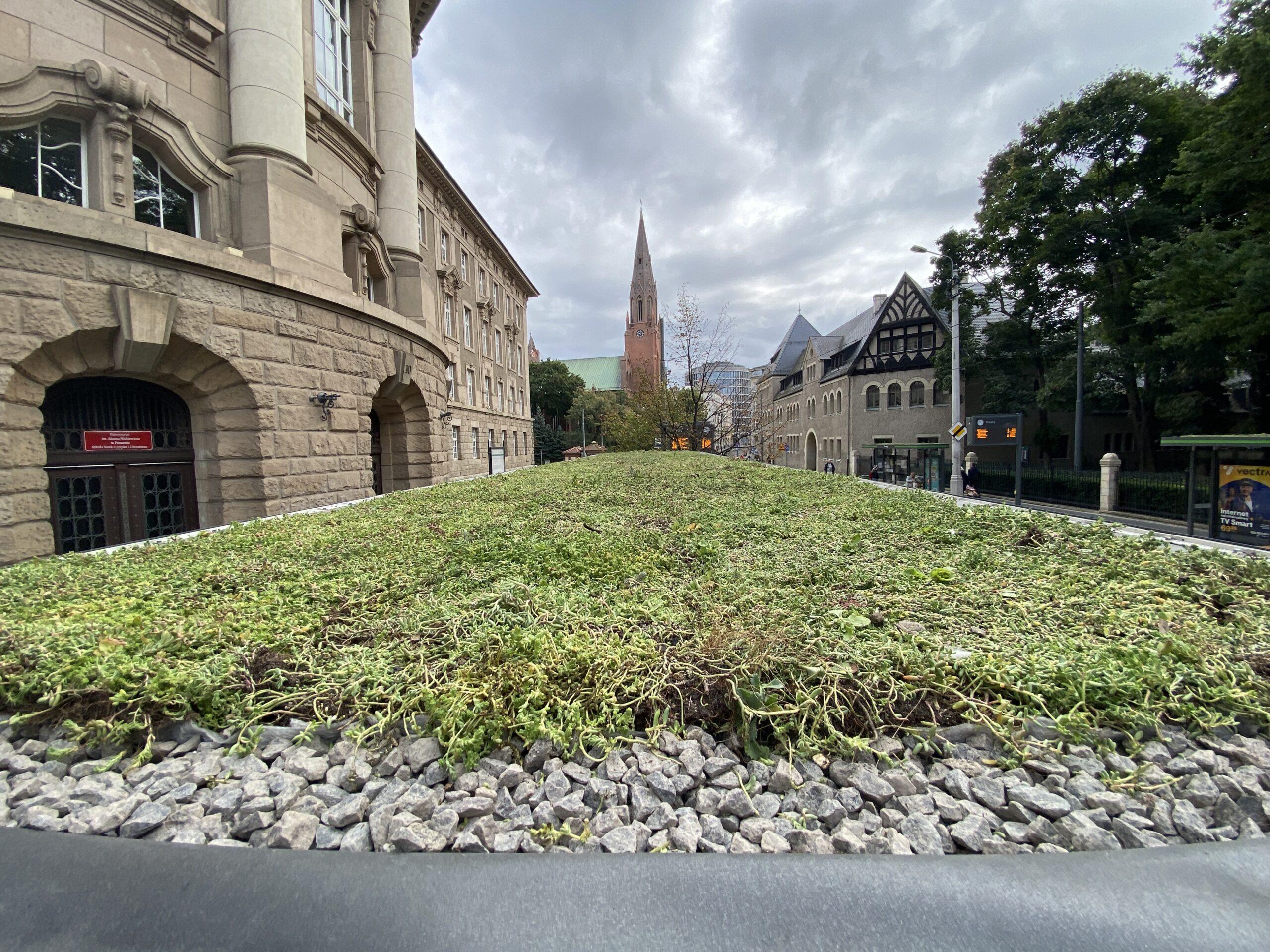 Kolejne zielone wiaty przystankowe w Poznaniu