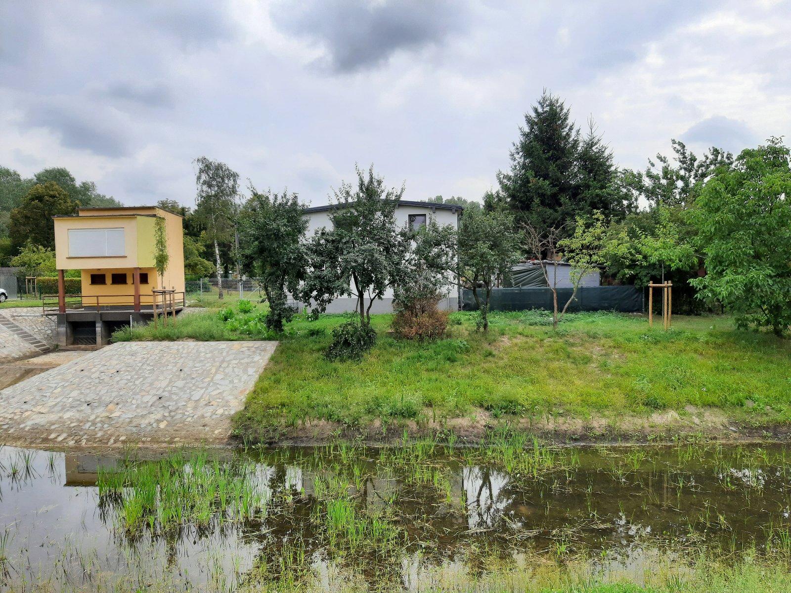 Lepsza retencja i ciekawiej dla owadów i pieszych, czyli modernizacja zbiornika wodnego Bielniki